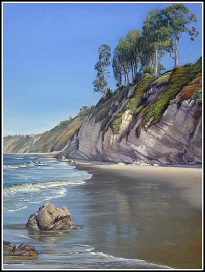cliff along a santa barbara beach
